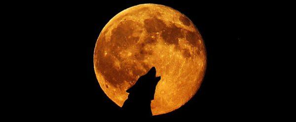 noaptea sfantului andrei 30 noiembrie traditii