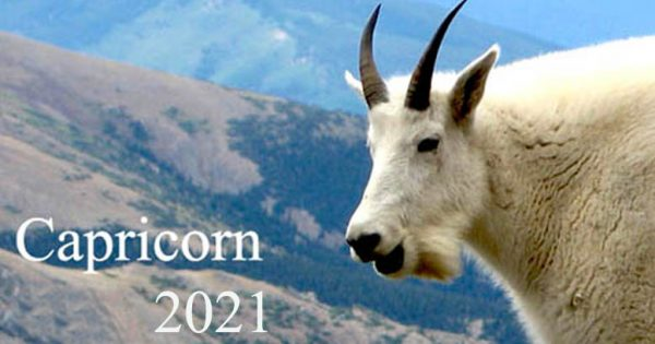 horoscop 2021 capricorn