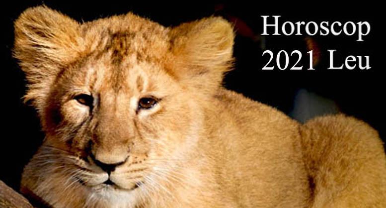 horoscop 2021 leu